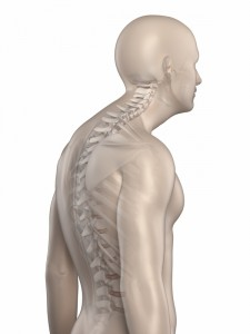 Man spine kyphosis phase 3 isolated
