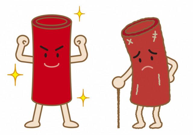 血液、リンパ液、脳脊髄液の循環を調整する